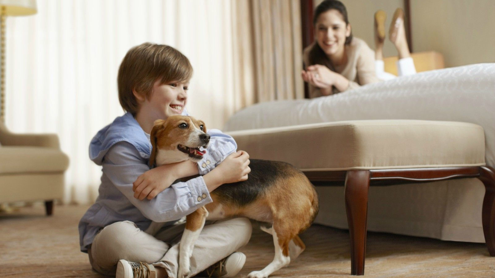 Pet Friendly Hotels | The Westin Governor Morris